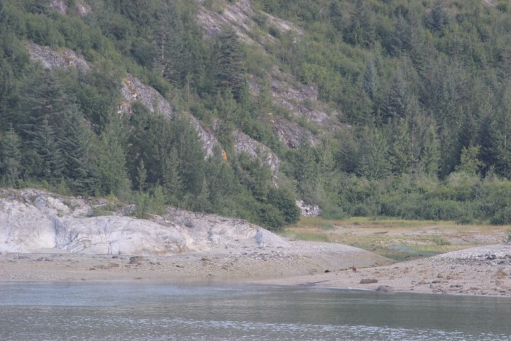 The tiny brown dot on shore is a bear.